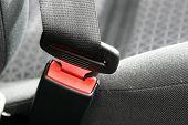 A secured car seat belt safety restraint poster