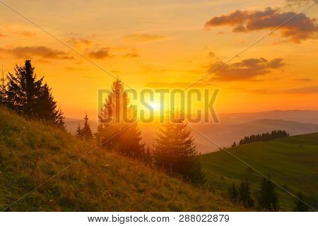 Autumn Hills. View Of  Sunbeams Through Conifer Forest In Early Morning