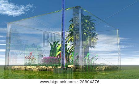 Terrarium inside of a glass enclosure