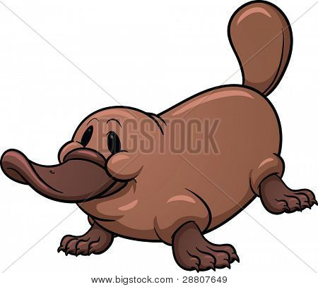 Cute cartoon platypus.  Vector illustration with simple gradients. All in a single layer.