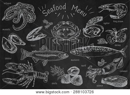 Seafood Menu, Octopus, Mussels, Lobster, Trout, Shells, Mackerel, Crab, Oyster, King Prawns, Shrimps