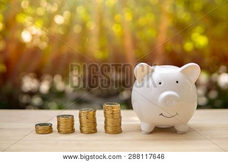 Piggy bank and money coin bars on a wooden table in sunlight background. - Saving money concept, Save money with stack money coin for growing your business and save for the invest and for the future. poster