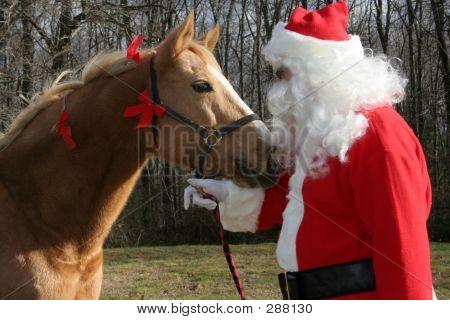 Horse And Santa