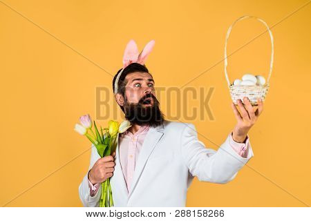 Happy Easter. Surprised Bearded Man In Suit Holds Basket With Eggs. Rabbit Man In Bunny Mask With Fl