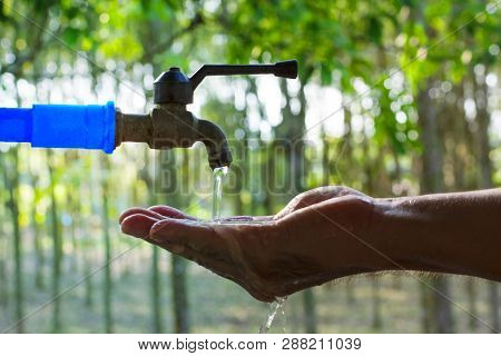 Hand Washing On Blur Green Nature Background, Water Energy Conservative Concept, Clean Hand By Water