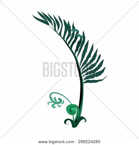 Exotic Fern Illustration.nature, Flora, Summer. Nature Plants Concept. Vector Illustration Can Be Us