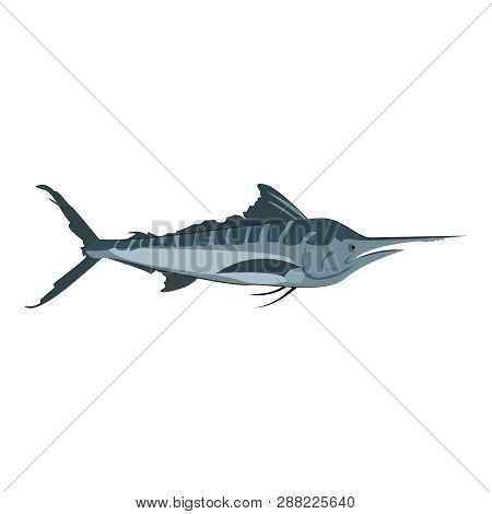 Atlantic Blue Marlin. Saltwater Swordfish With Long And Stout Bill. Can Be Used For Topics Like Fish
