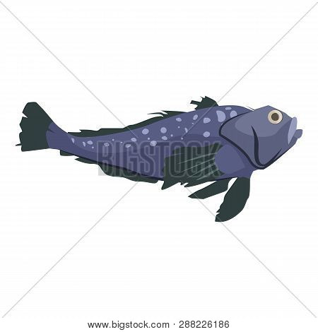 North-atlantic Spotter Wolfish. Large Marine Leopardfish. Can Be Used For Topics Like Fishing, Botto