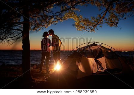 Night Camping Under Tree At Sea. Silhouettes Of Hiker Couple, Back View Of Man And Woman Stand At Ca