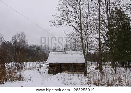 Winter landscape with old rural bathhouse and dry plants. poster