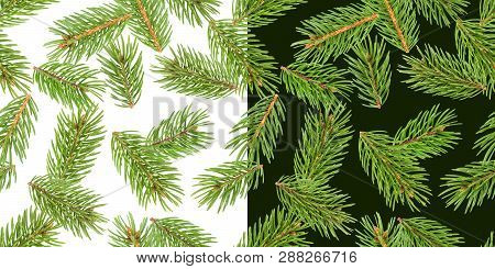 Fir Tree Branches Seamless Pattern, Pine Branch, Christmas Conifer Isolated On White And Green Backg