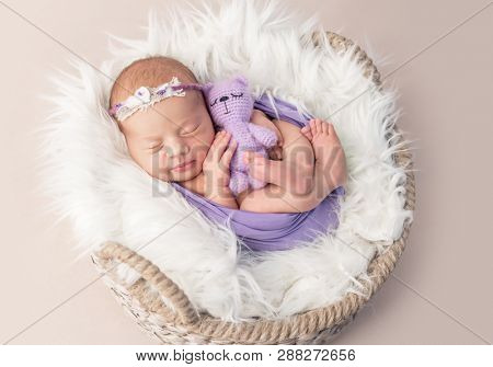 Sleepy newborn child in shaggy wool-covered basket with purple knitted toy, isolated