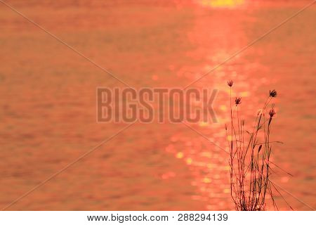 A Reflection Of Sunlight On The Sea Sunset