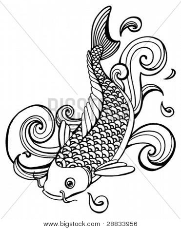 koi fish (vector)