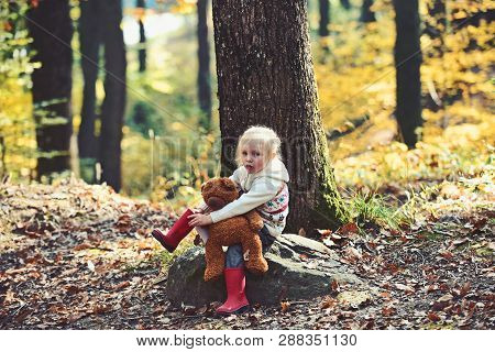 Active Little Girl With Teddy Bear In Autumn Forest. Active Rest And Activity On Fresh Air In Woods