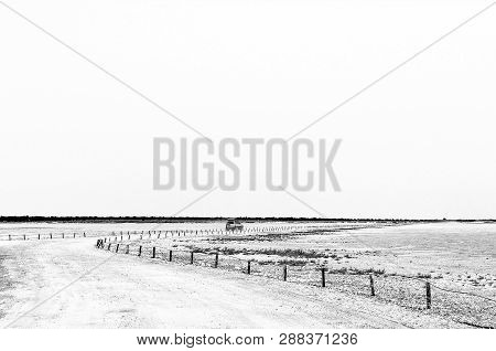 The View From The Viewpoint On The Etosha Pan In Northern Namibia. Monochrome