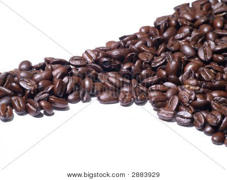 Coffee Beans Line