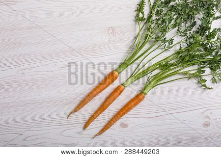 Bunch Of Organic Carrots At The Farmers Market