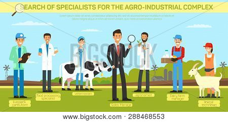 Flat Banner Search Specialist For The Agro Industrial Complex. Livestock Consultant Food Processing