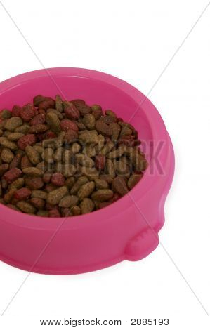 A pink bowl of cat food isolated on a white background poster