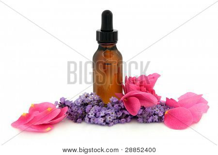 Rose flower petals and lavender herb flowers with aromatherapy brown glass dropper bottle isolated over white background. Lavandula and rosa rugosa.