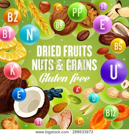 Nuts And Grains, Dried Fruits And Gluten Free Food. Vector Vitamin Complex And Dietary Nutrition Or