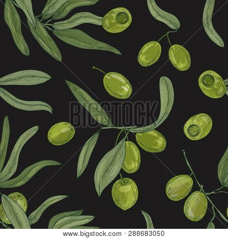 Natural Seamless Pattern With Olive Tree Branches, Leaves, Green Organic Raw Fruits Or Drupes On Whi