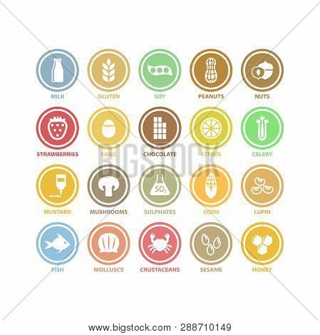 Food Allergens White Circle Vector Signs In Colorful Labels. Food Allergens Symbols Sticker Label Se