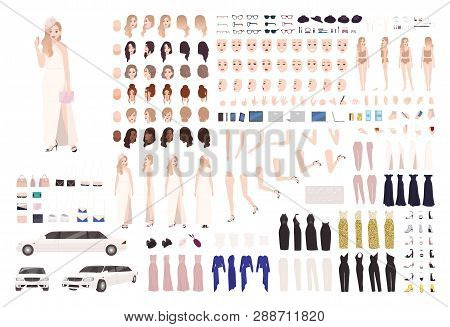 Fashionable Celebrity Woman Animation Set Or Diy Kit. Bundle Of Body Elements, Gestures, Postures, S