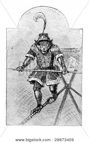 "Trained monkey. Engraving by Specht. Published in magazine ""Niva"", publishing house A.F. Marx, St. Petersburg, Russia, 1893 poster"