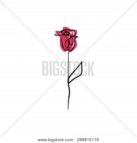 Minimalist Contour Flower Rose Drawing. One Line Art