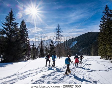 Group Of Adults Snowshoeing Thruogh A Forest On Snowy Plateau Kaiserau With Mountain Rottenmanner Ta