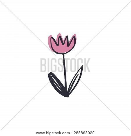 Minimalist Contour Flower Drawing. One Line Art