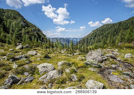 Alpine Landscape: Stony Meadow, Forest, Mountains And Blue Sky