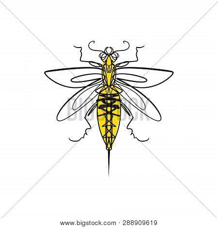 Hand Drawn Elegant Ink Wasp Or Hornet Line Art Sketch Tattoo Art