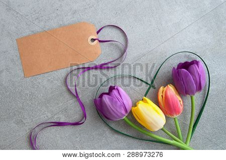 Spring Tulips With Greeting Card