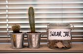 Swear jar on a kitchen window ledge with cactus plants poster