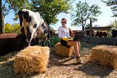 Business woman with laptop milking cow on farm poster