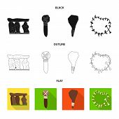 Isolated object of evolution  and prehistory icon. Set of evolution  and development  vector icon for stock. poster