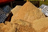 Sawdust leaves an Augur and piles up inside an old manure spreader at a sawmill poster