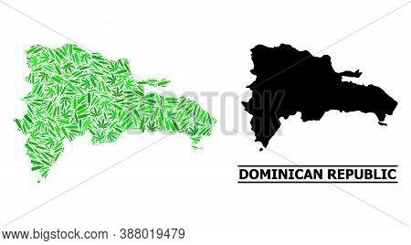 Drugs Mosaic And Usual Map Of Dominican Republic. Vector Map Of Dominican Republic Is Formed Of Rand