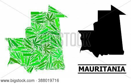 Addiction Mosaic And Usual Map Of Mauritania. Vector Map Of Mauritania Is Composed Of Scattered Inoc