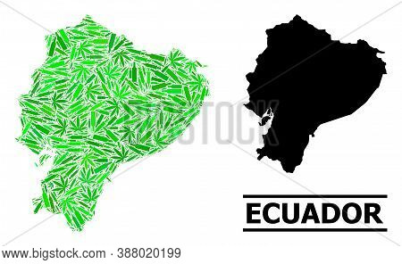 Addiction Mosaic And Solid Map Of Ecuador. Vector Map Of Ecuador Is Organized Of Randomized Inoculat