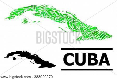 Drugs Mosaic And Usual Map Of Cuba. Vector Map Of Cuba Is Constructed With Randomized Vaccine Symbol