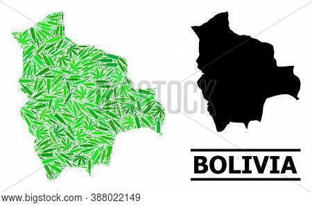 Addiction Mosaic And Usual Map Of Bolivia. Vector Map Of Bolivia Is Composed Of Randomized Inoculati