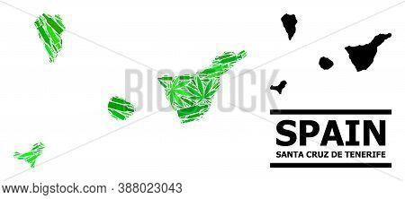 Addiction Mosaic And Usual Map Of Santa Cruz De Tenerife Province. Vector Map Of Santa Cruz De Tener