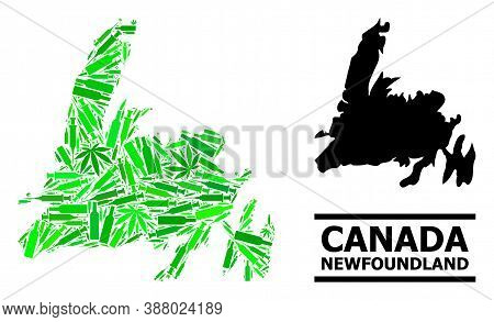 Drugs Mosaic And Solid Map Of Newfoundland Island. Vector Map Of Newfoundland Island Is Created With