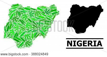 Addiction Mosaic And Usual Map Of Nigeria. Vector Map Of Nigeria Is Organized Of Randomized Inoculat