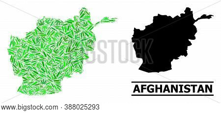 Addiction Mosaic And Solid Map Of Afghanistan. Vector Map Of Afghanistan Is Made Of Scattered Syring