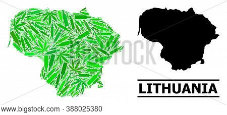 Drugs Mosaic And Usual Map Of Lithuania. Vector Map Of Lithuania Is Shaped From Scattered Inoculatio